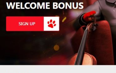 Red Dog Casino -mobile site