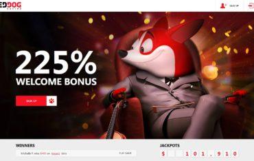 Red Dog Casino – website review