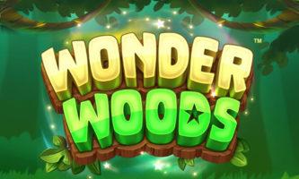 Wonder Woods slot