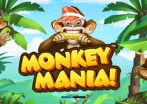 monkey mania slot