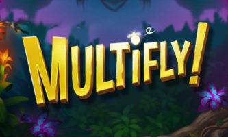 multifly slot