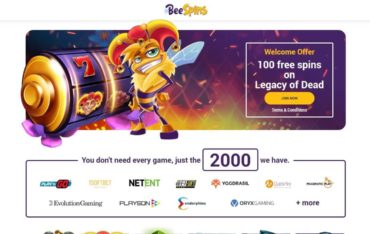 Beespins.com - Website Review