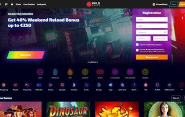 wildtokyocom - Website Review