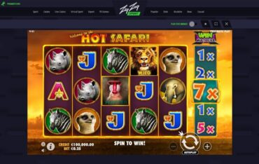 Game Play at ZigZagSport Casino