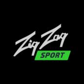 ZigZagSport Casino