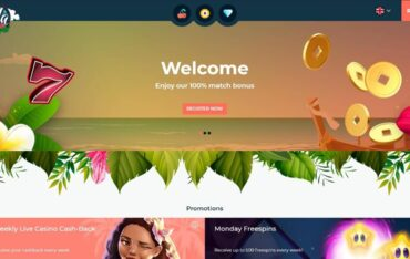 hulaspincom - Website Review