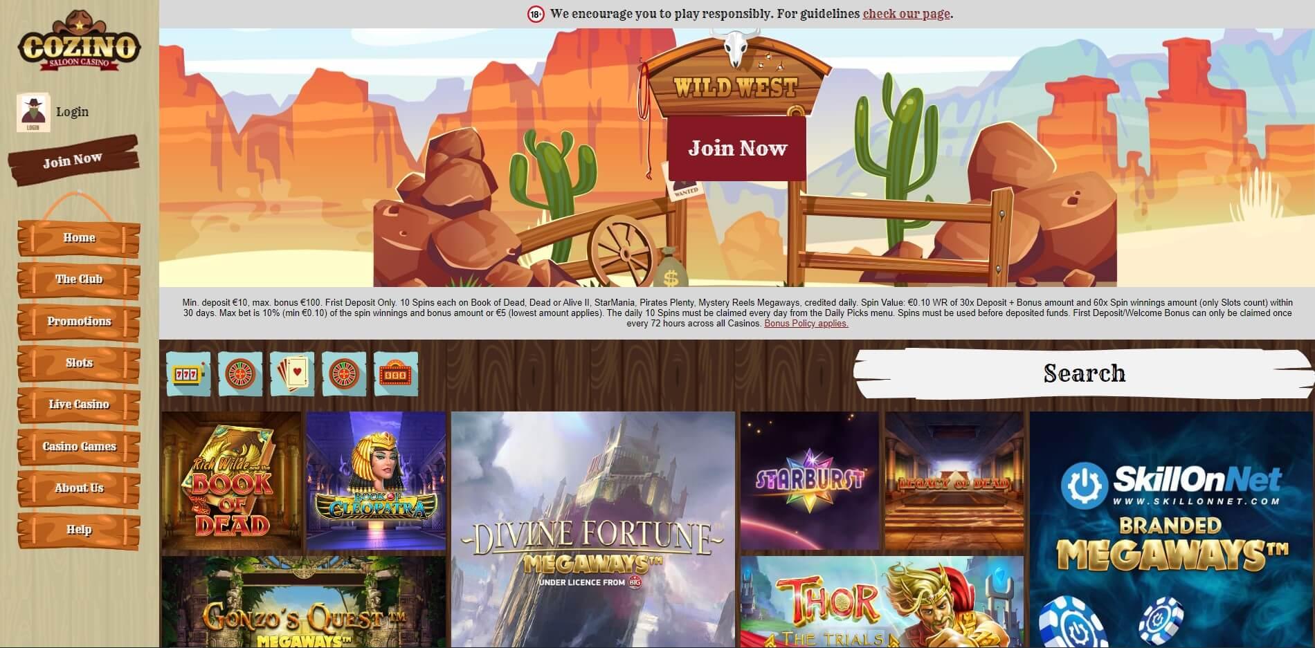 cozino.com - Website Review